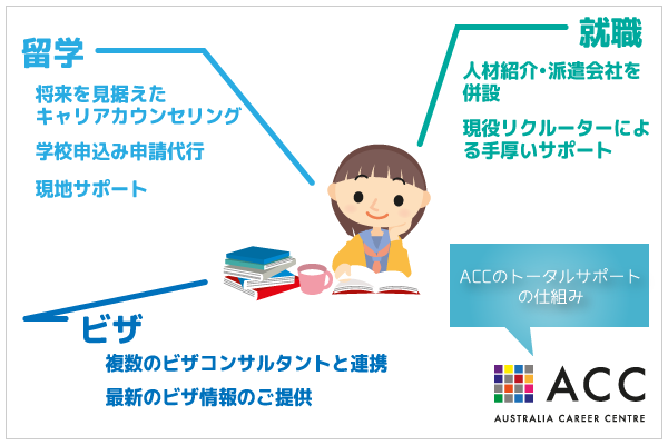 ACC-support02